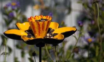 bird feeder, wildlife trust