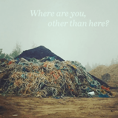 Pile of discarded variously colored fishing ropes in foggy landscape