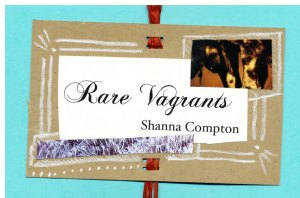 Cover of Rare Vagrants accordion chapbook with black script title, collage artwork and white pencil on brown card, raffia binding.