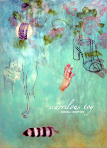 Cover of Scurrilous Toy with white script lettering on a painting by Elizabeth Zechel, featuring scratched out striped ball, roses, a woman's hand, and partial sketches of a sandaled foot and medical examination.