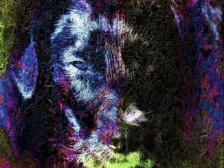 Dog Symbology and Folklore