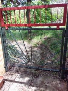 dog proofing