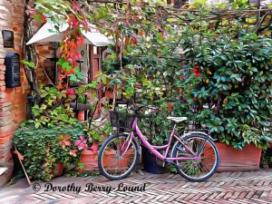 Bicycles That Complement Their Surroundings