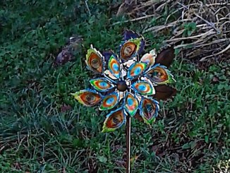 peacock wind spinner