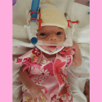 How to survive NICU: Lucia Wren's Story