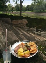 Rice and curry for lunch by Elephant Pond, made for us by our drivers wife.