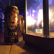 Lion lager, the default brew in Sri Lanka.