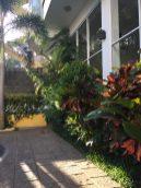 Greenery at a hotel
