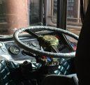Public bus steering wheel. Seems legit.