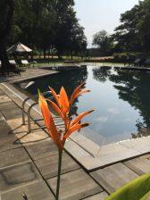 Lovely hotel in Dambulla