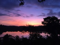Sri Lanka needs no filter. This was my first sunrise at Tri, photographed from my balcony in my pajamas.
