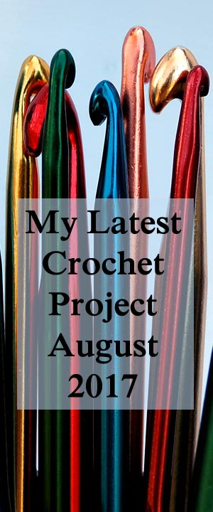 My Latest Crochet Project August 2017