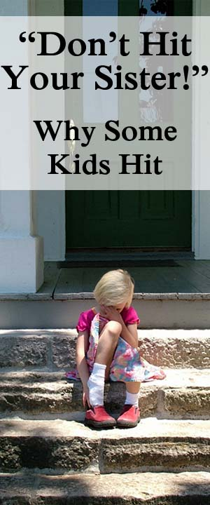 """Don't Hit Your Sister!""– Why Kids Hit"