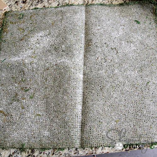 Sheet Moss 2