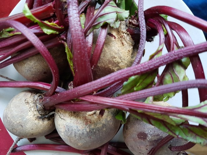 Cook beetroot
