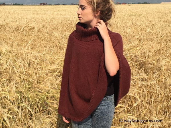 Autumn in Alta Poncho