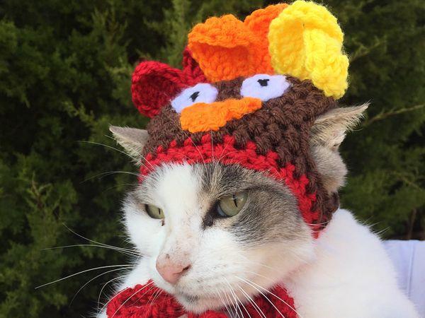 crochet Cat - Dog Turkey Hat free pattern