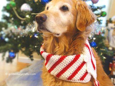 crochet Christmas Dog Scarf free pattern