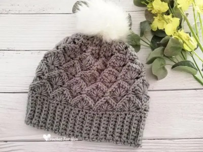 crochet Bavarian Stitch Beanie free pattern