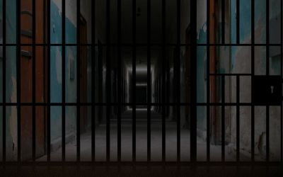 الحكم على متحرش مطار القاهرة بالسجن ثلاثة أعوام!