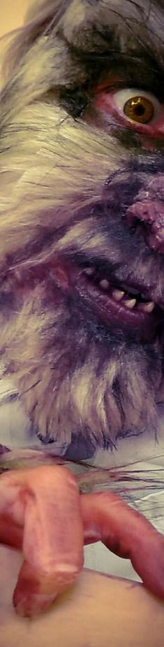 Charlotte Pingriff's Wolfman
