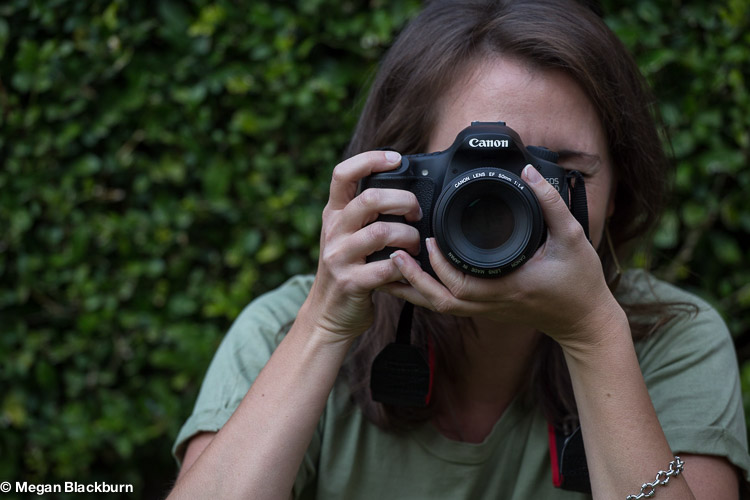 Safari Photography Tips - Sharing a Table