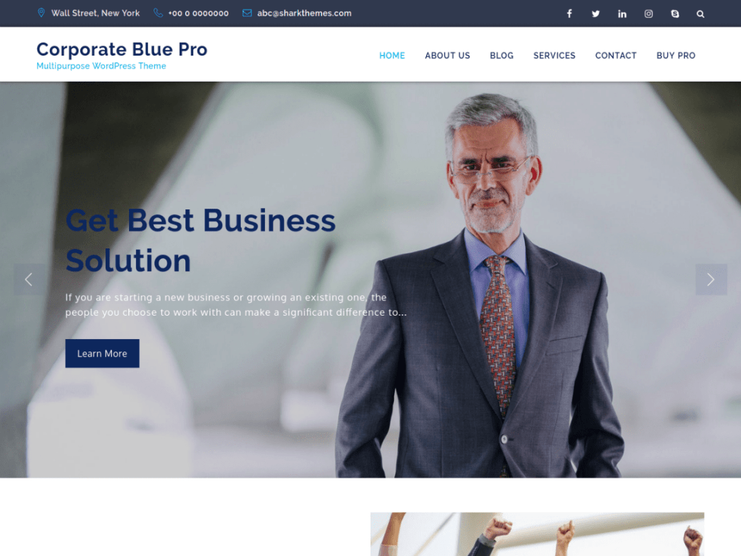 Corporate Blue Pro