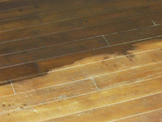 Refinish Wood Floors -Floor staining