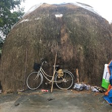 Mushroom hut and bicycle