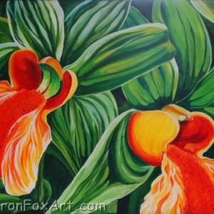 Grace Orchid