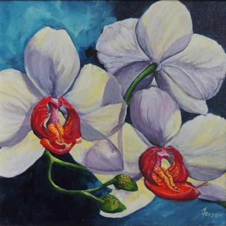 White Phalaenopsis Orchid in Bloom, Acrylic on Canvas, 2014