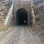 Bizz Johnson - Tunnel