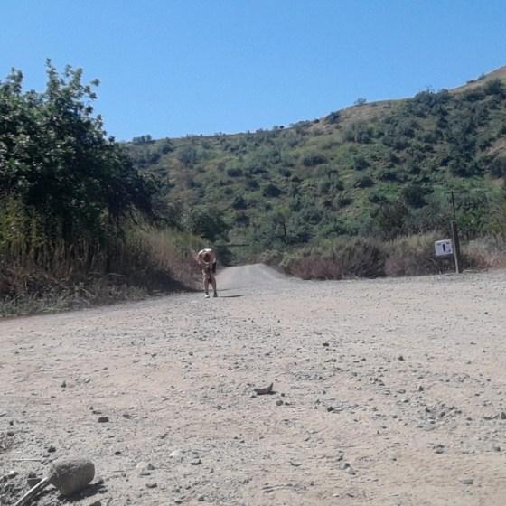 #35 Chino Hills