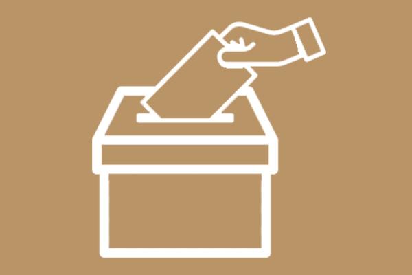 Mock election fever at Sharples School
