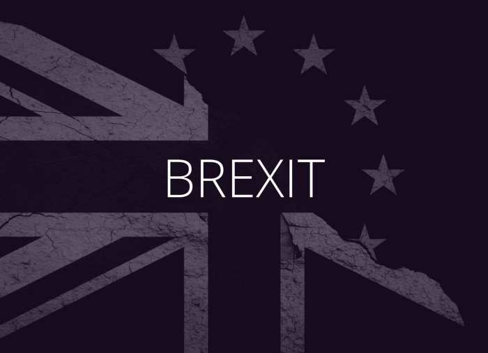 Brexit 101: What is it and should you care?   Podcast