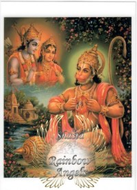 Hanuman (HN) - 5X7 Laminated Altar Card | Shasta Rainbow Angels