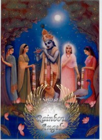 Krishna (KR1) - 5X7 Laminated Altar Card | Shasta Rainbow Angels