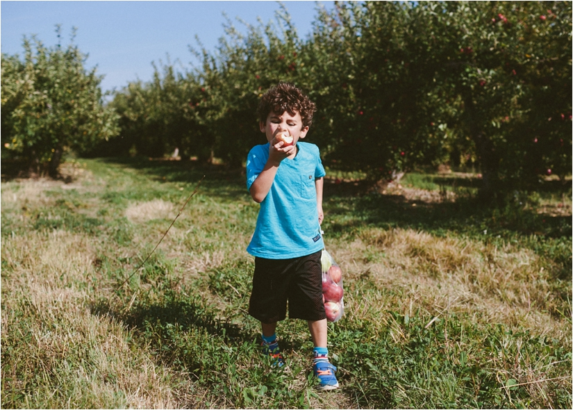 apple picking at becker farms
