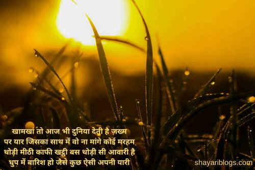 Hindi Shayari on Best Friend image