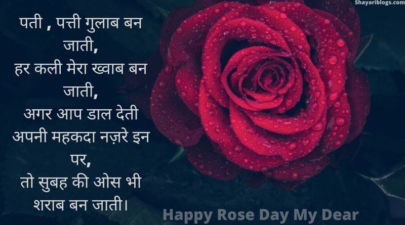 rose day special shayari image