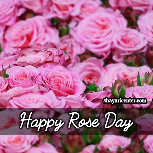 best rose day shayari for friend