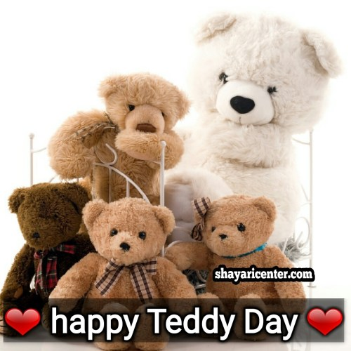 i wish a teddy day till the day