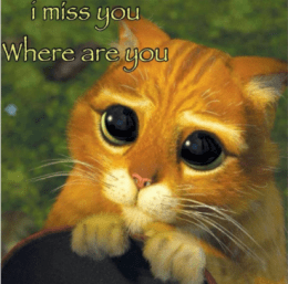 I miss you best funny meme