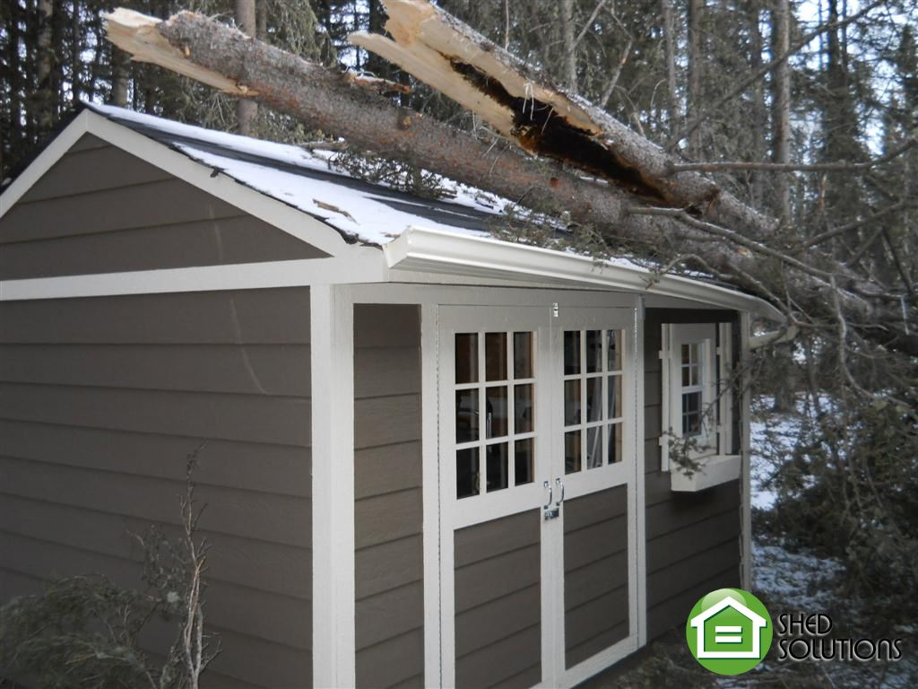 Featured Shed Week Of December 3 2012 Shed Solutions