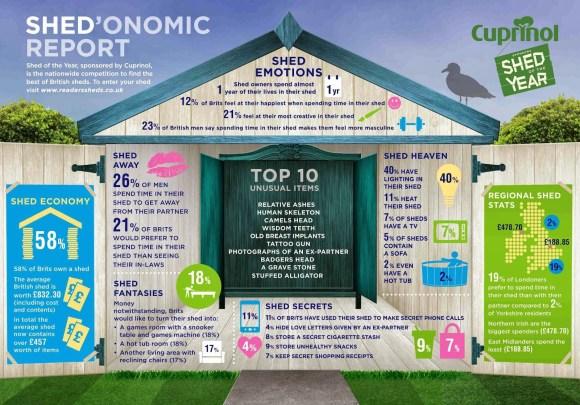 Shedonomics infographic