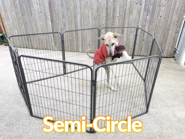 The dog pen in the semi-circle formation. A dog in a red jacket is inside.