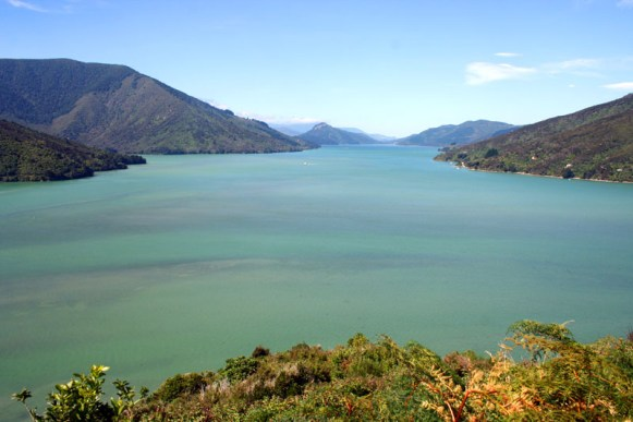 Aussicht auf die Marlborough Sounds
