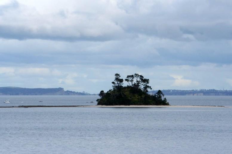 Insel auf dem Weg nach Kawau Island