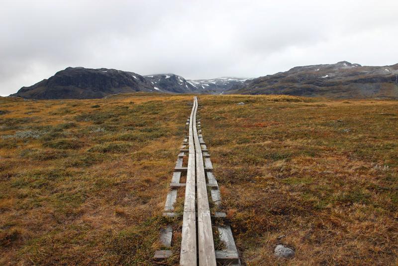 Typische Plankenwege führen durch die Sumpfgebiete