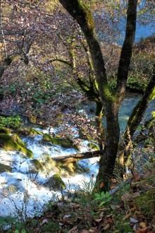 Fülle und Reichtum des Wassers ist allgegenwärtig